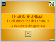 Le monde animal : la classification phylogénétique